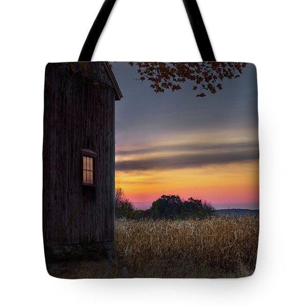 Tote Bag featuring the photograph Autumn Glow Square by Bill Wakeley
