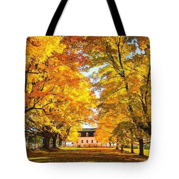 Tote Bag featuring the photograph Autumn Gold IIi by Robert Clifford
