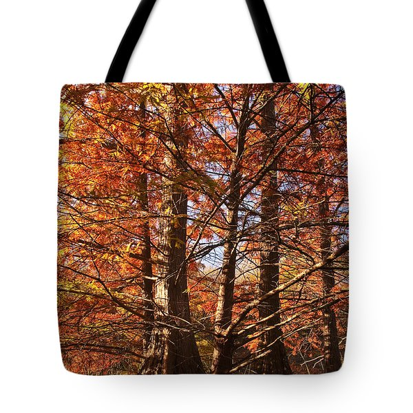 Tote Bag featuring the photograph Autumn Grandeur At Lake Murray by Tamyra Ayles