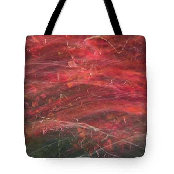 Autumn Graphics II Tote Bag