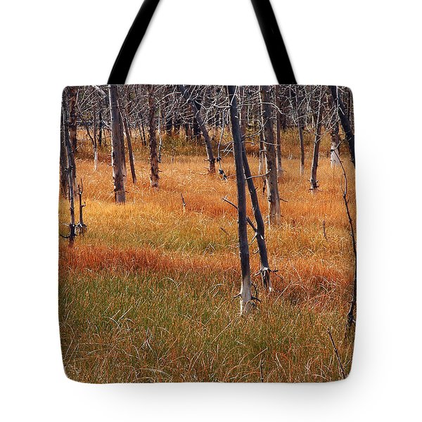 Autumn Grasses In Yellowstone Tote Bag