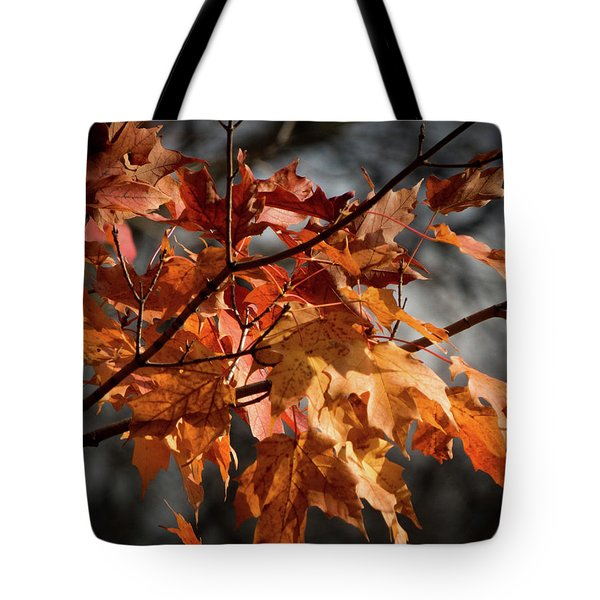 Tote Bag featuring the photograph Autumn Gray by Kimberly Mackowski
