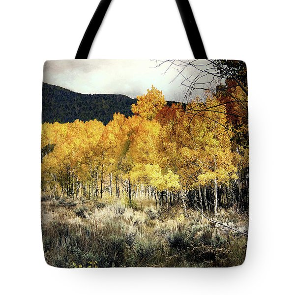 Autumn Hike Tote Bag by Jim Hill