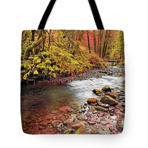 Autumn In An Oregon Rain Forest  Tote Bag