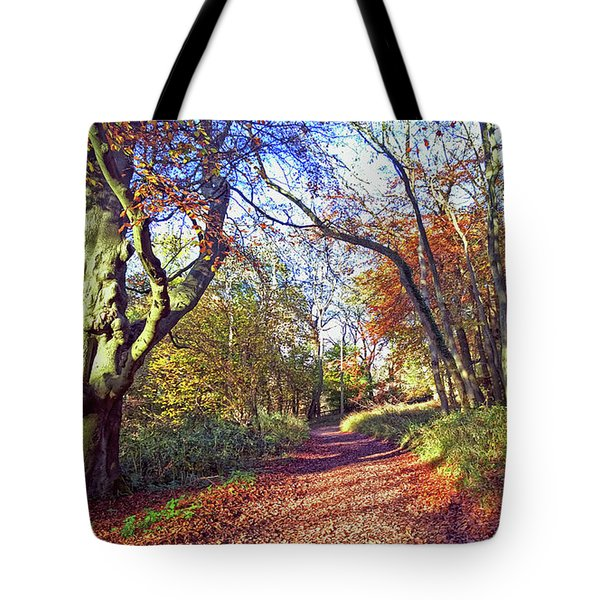 Autumn In Ashridge Tote Bag by Anne Kotan