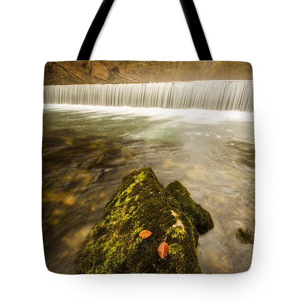 Tote Bag featuring the photograph Autumn In Croatia by Davorin Mance