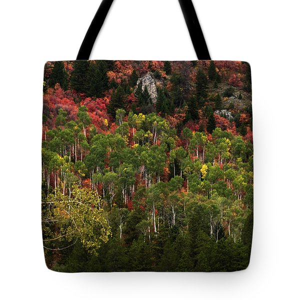 Autumn In Idaho Tote Bag by Yeates Photography