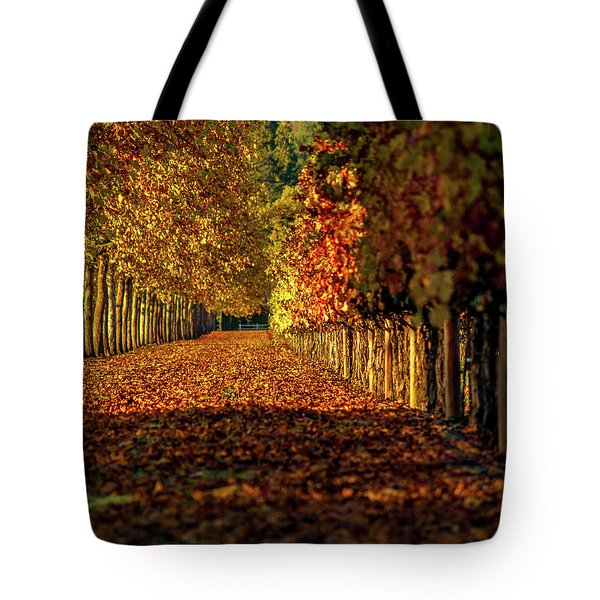 Tote Bag featuring the pyrography Autumn In Napa Valley by Bill Gallagher
