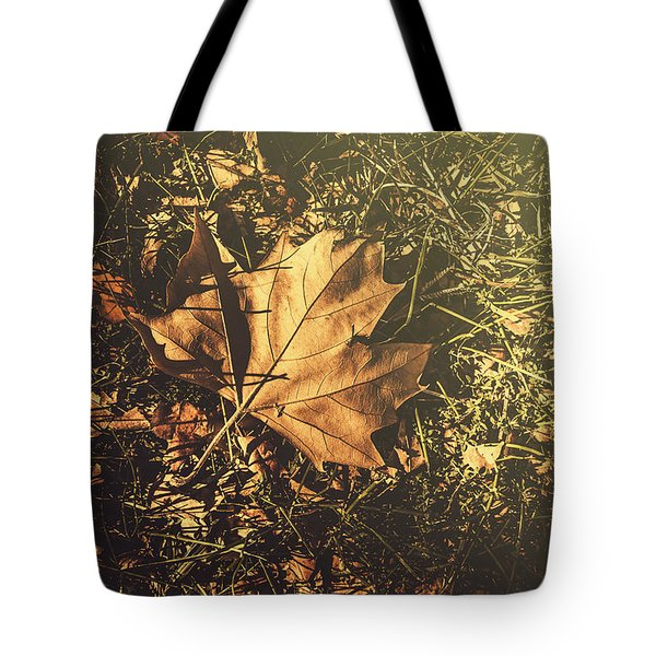 Tote Bag featuring the photograph Autumn In Narrandera by Jorgo Photography - Wall Art Gallery