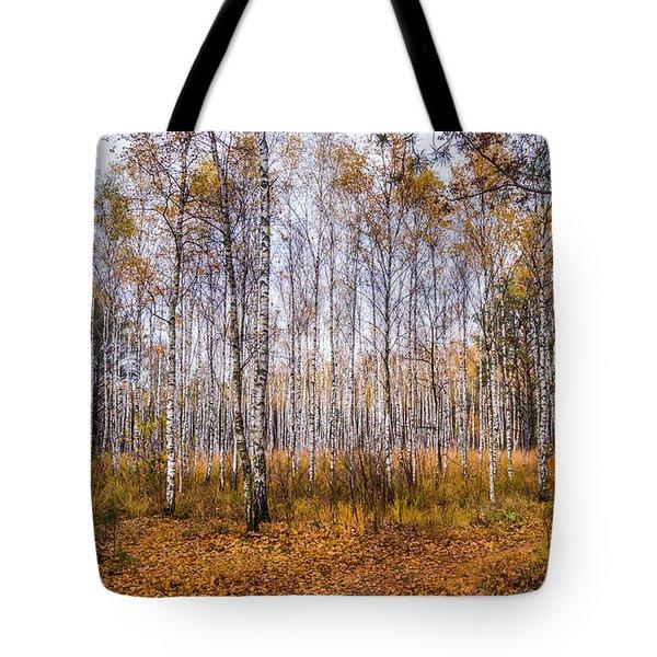 Autumn In The Birch Grove Tote Bag