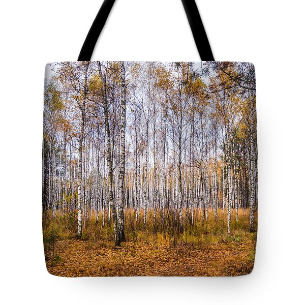 Tote Bag featuring the photograph Autumn In The Birch Grove by Dmytro Korol