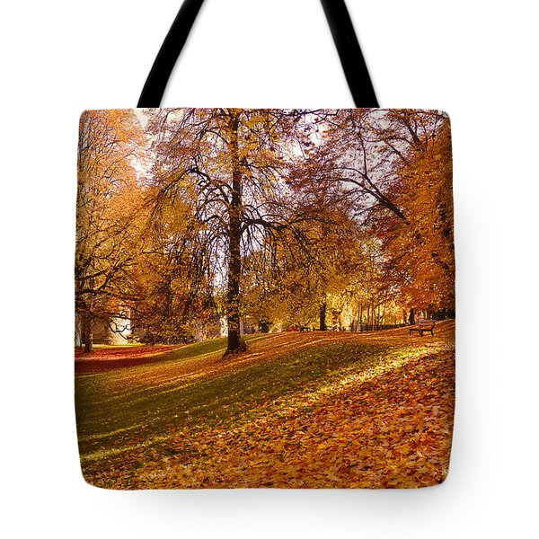 Autumn In The City Park Maastricht Tote Bag by Nop Briex
