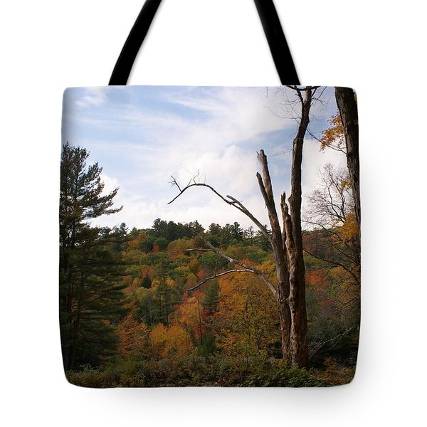 Autumn In The Hills Tote Bag by Lois Lepisto