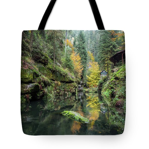 Autumn In The Kamnitz Gorge Tote Bag by Andreas Levi