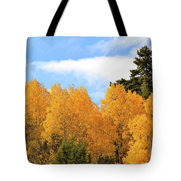 Autumn In The Owyhee Mountains Tote Bag
