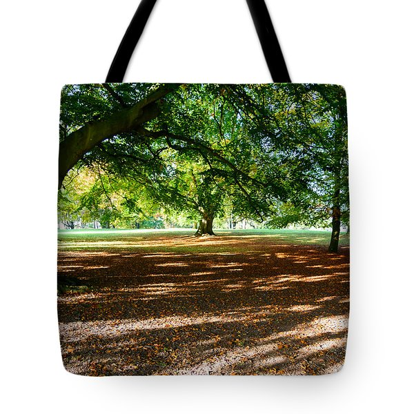 Autumn In The Park Tote Bag by Colin Rayner