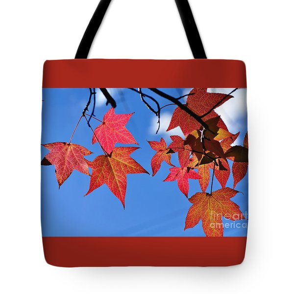 Autumn In The Sky Tote Bag by Kaye Menner