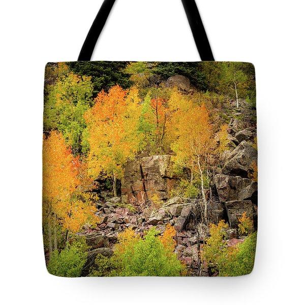 Autumn In The Uinta Mountains Tote Bag