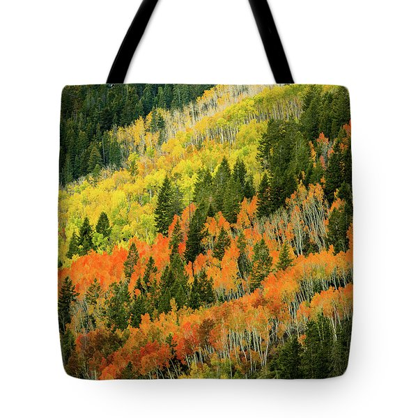 Autumn In The Uintas Tote Bag