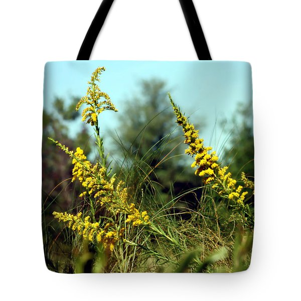 Autumn In The Wind Tote Bag by Debra Forand