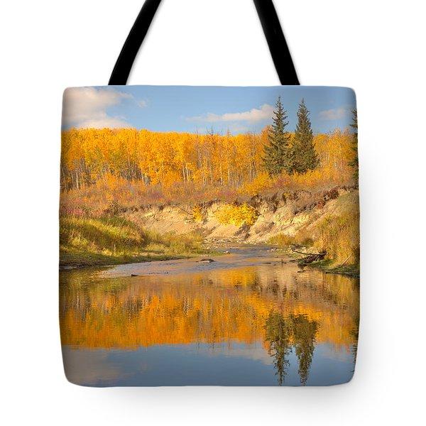 Autumn In Whitemud Ravine Tote Bag by Jim Sauchyn