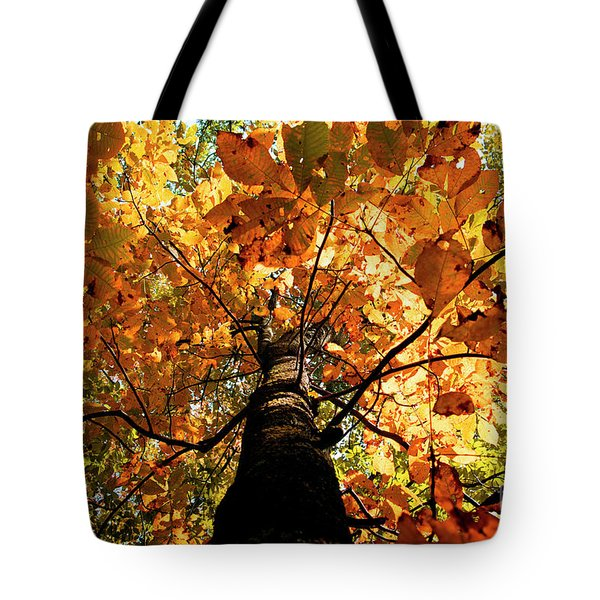 Autumn Is Glorious Tote Bag