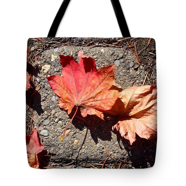 Autumn Is Here Tote Bag by Blenda Studio