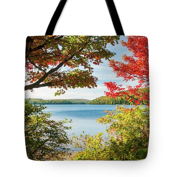 Tote Bag featuring the photograph Autumn Lake by Elena Elisseeva