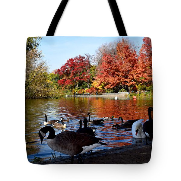 Autumn Lake With Geese Tote Bag