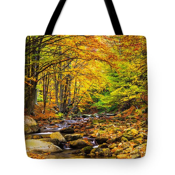 Autumn Landscape Tote Bag by Evgeni Dinev