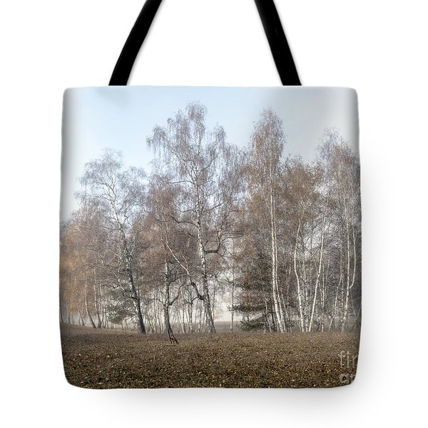 Autumn Landscape In A Birch Forest With Fog Tote Bag
