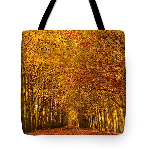Autumn Lane In An Orange Forest Tote Bag