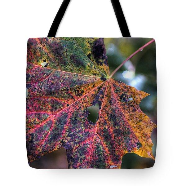 Autumn Leaf 4 Tote Bag