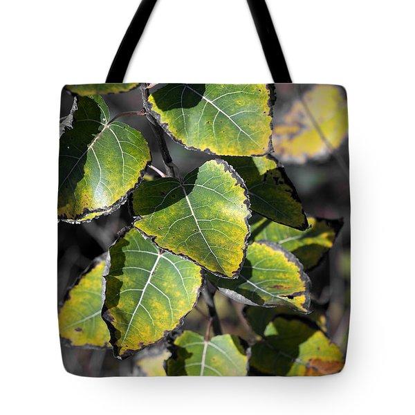 Autumn Leaf 5 Tote Bag