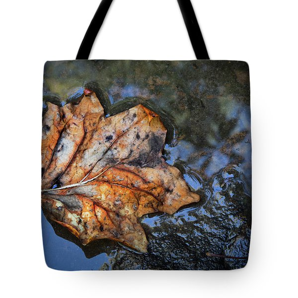 Tote Bag featuring the photograph Autumn Leaf by Debra and Dave Vanderlaan