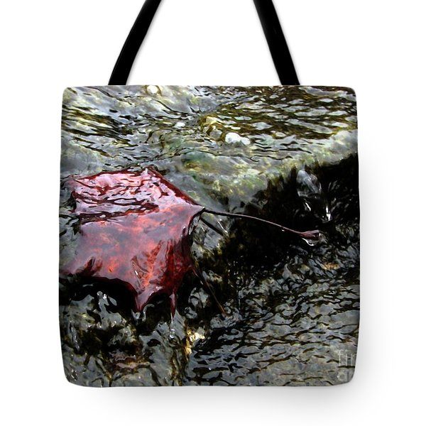 Autumn Leaf In Winter Creek Tote Bag by Misha Bean