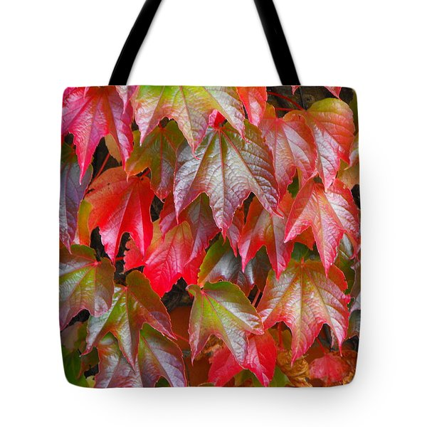 Autumn Leaves 01 Tote Bag