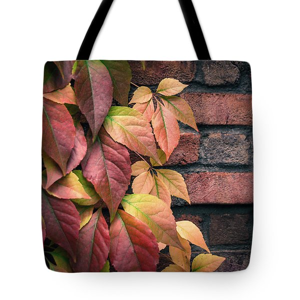 Autumn Leaves Against Brick Wall Tote Bag