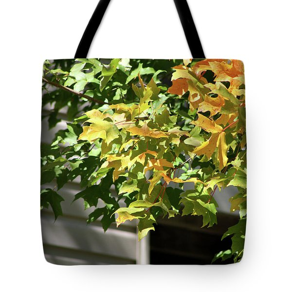 Autumn Leaves Against White Tote Bag by Michele Wilson