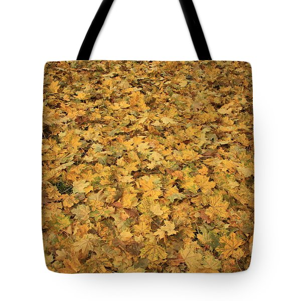 Autumn Leaves Canvas Tote Bag by Carol Groenen
