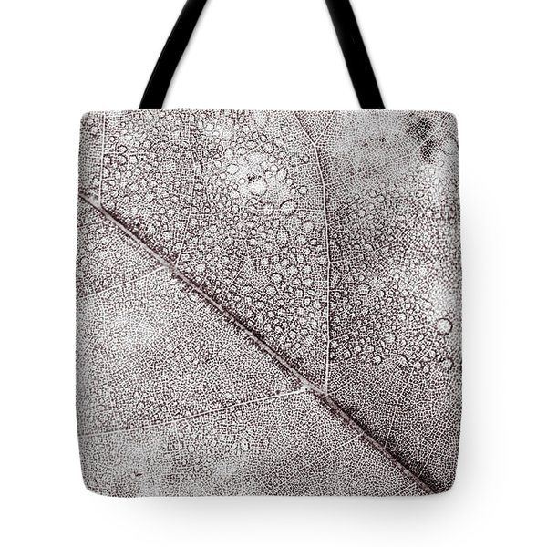 Tote Bag featuring the photograph Autumn Leaves Changing Color During October - November For Fall  by Jingjits Photography