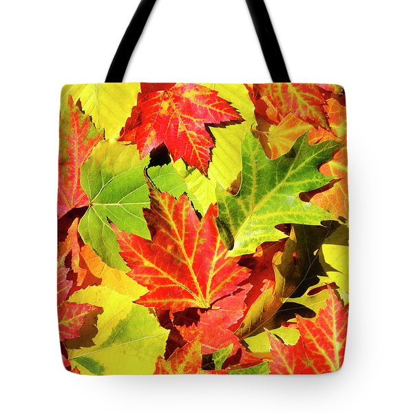 Tote Bag featuring the photograph Autumn Leaves by Christina Rollo
