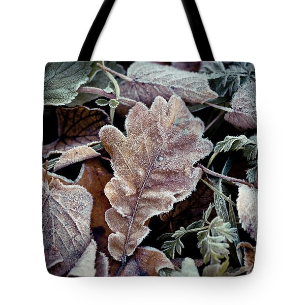 Autumn Leaves Frozen Artmif.lv Tote Bag