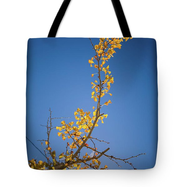 Tote Bag featuring the photograph Autumn Leaves Is Changing Color During October Fall Season With  by Jingjits Photography