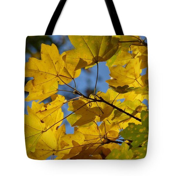 Tote Bag featuring the photograph Autumn Leaves by Jean Bernard Roussilhe