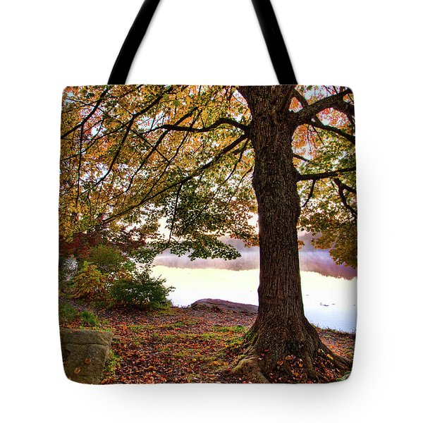 Tote Bag featuring the painting Autumn Leaves On The Blue Ridge Parkway by Dan Carmichael