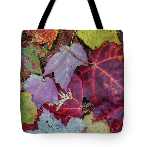Tote Bag featuring the photograph Autumn Leaves by Paul Schultz