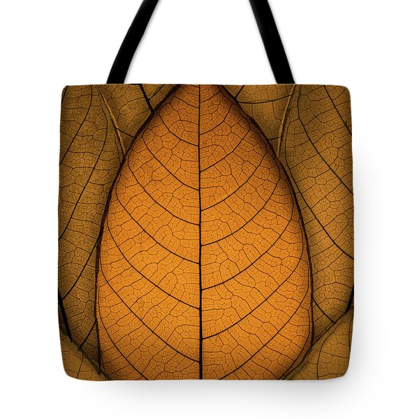 Tote Bag featuring the photograph Autumn Leaves by Paul Wear
