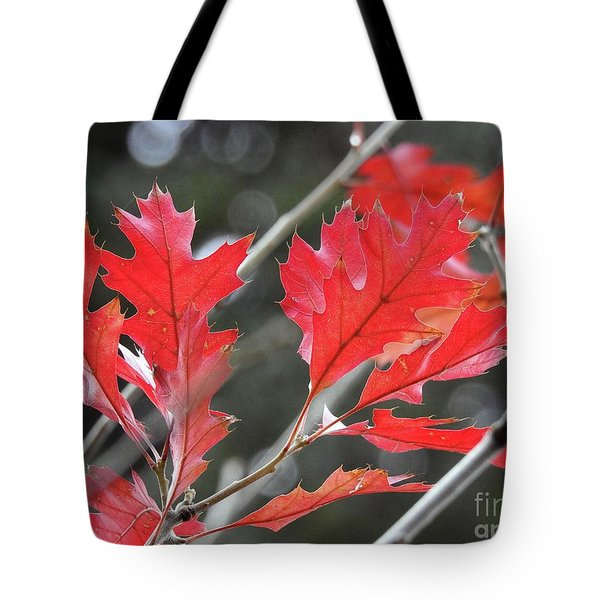 Tote Bag featuring the photograph Autumn Leaves by Peggy Hughes