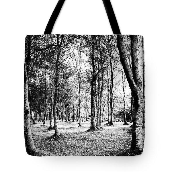 Autumn Lights Tote Bag by Edgar Laureano